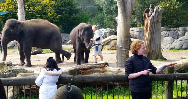 AUT students bring down barriers at Auckland Zoo
