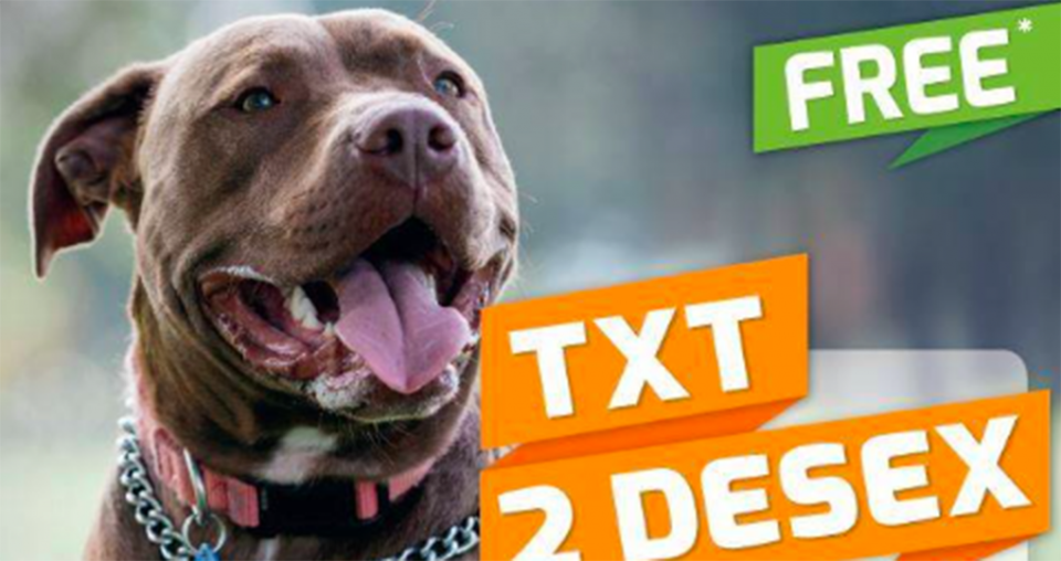 De-sexing deal for dangerous dog owners