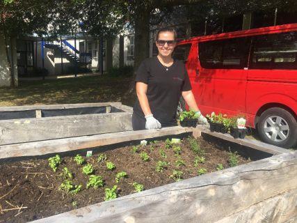 Students to grow veggies on campus